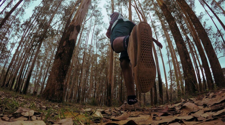 uma pessoa em pé correndo em uma floresta. a foto foi tirada de baixo, como se a camera estivesse no chão.